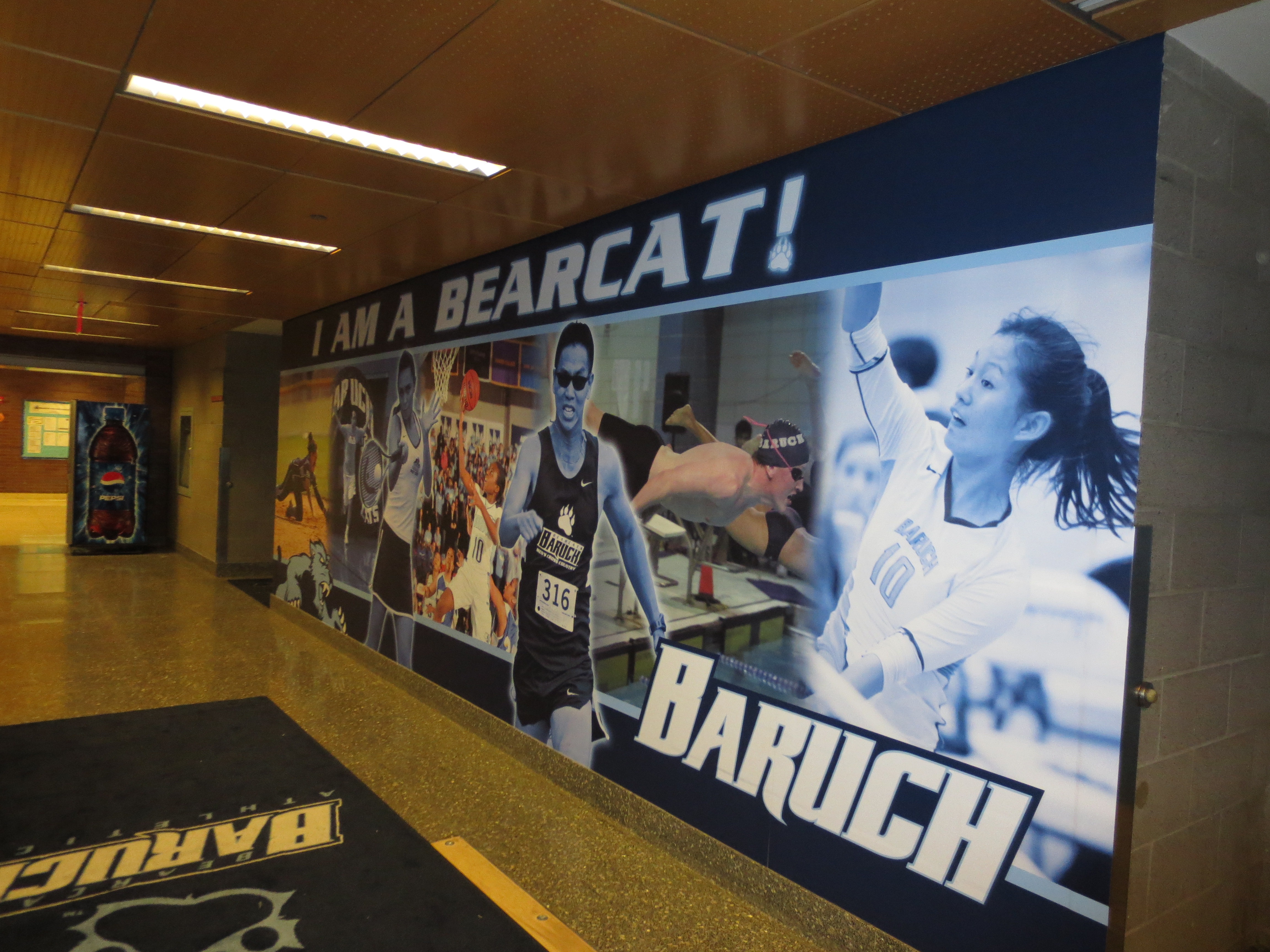 Sports Facility Wall Mural Designs By Oai Visual Branding